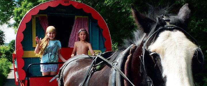Clissmann Horse Caravan arcticle in Kamille Mor and Barn