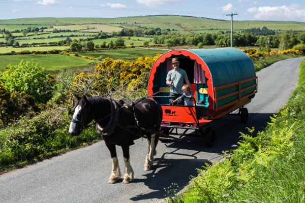 Family holiday in Wicklow, horse caravan experience