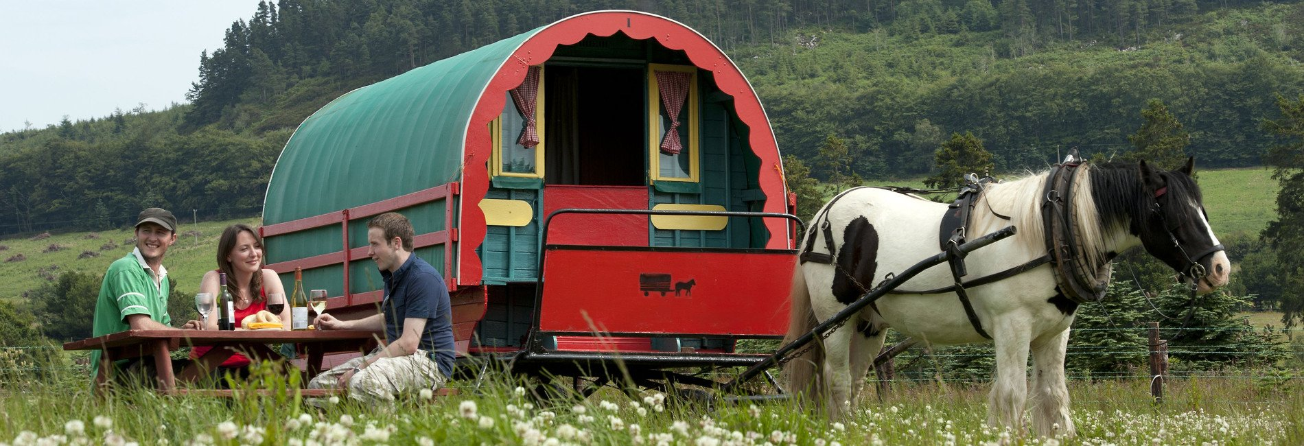 Eating in the wild with your gypsy horse caravan