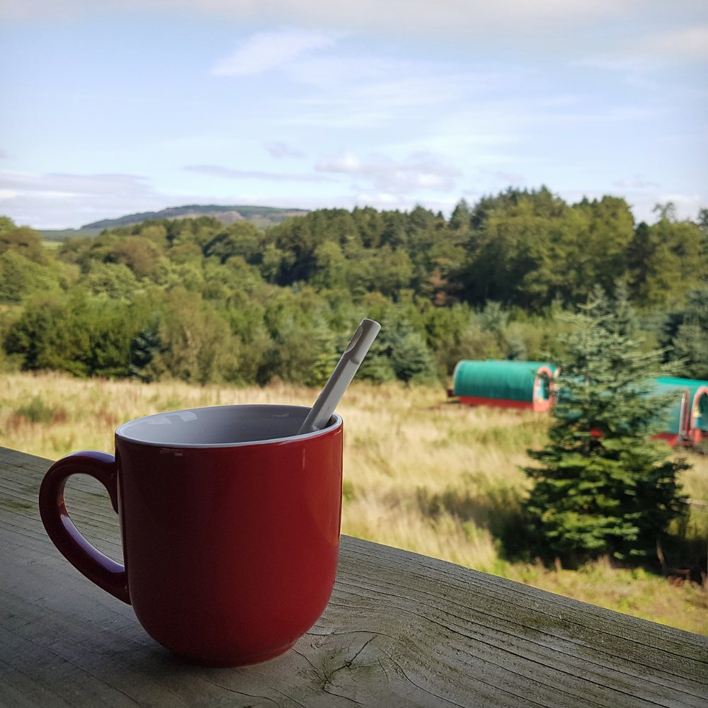 Self catering in Wicklow, glamping and horse caravan experience