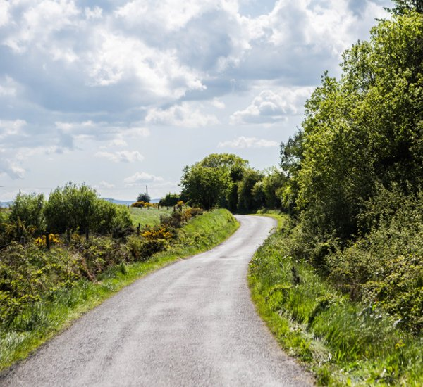 Irish roads for donkey walking and horse caravan experience