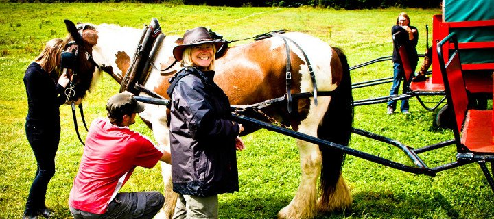 Clissmann-Horse-Caravans-faq-training