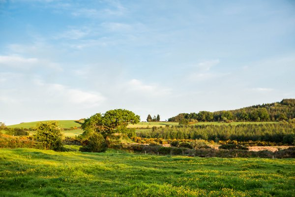 Beautiful Irish scenery in the garden of Ireland Wicklow