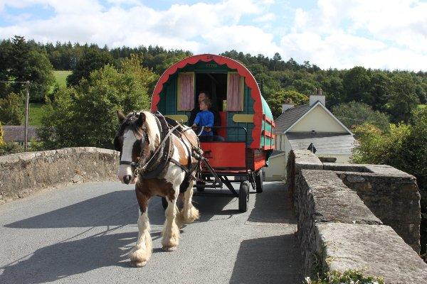 Crossing Ballinaclash bridge with a gypsy horse caravan