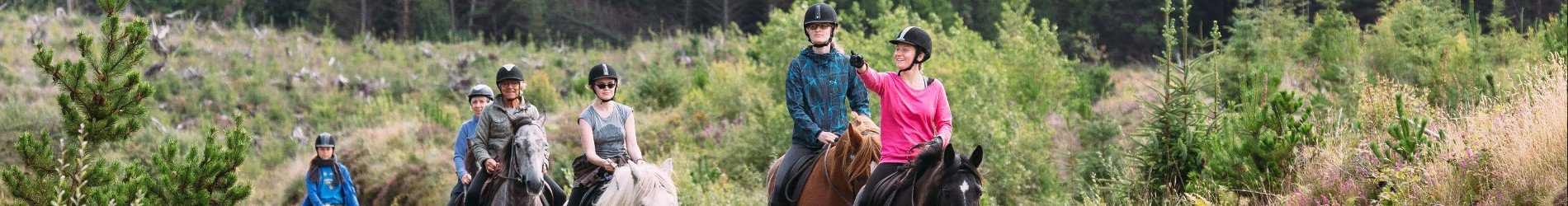 Horse riding in Wicklow