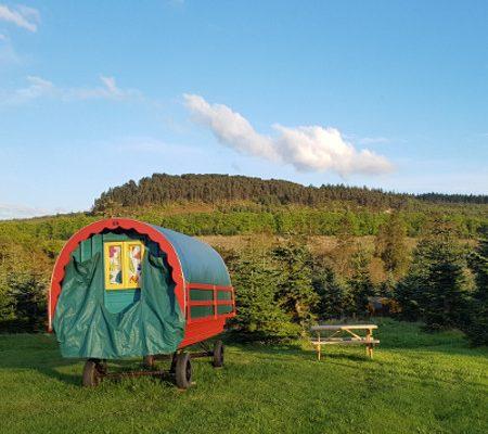 Clissmann Horse Caravans, Glamping and Donkey Walking